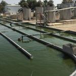 Израильская технология очистки воды экономит до 90% затрат энергии