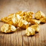 Собака на прогулке принесла хозяину почти килограмм золота