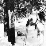 На перевале Дятлова расследование заинтересовалось непонятными знаками