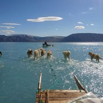 В Гренландии зафиксировали катастрофическое за всю историю таяние льда