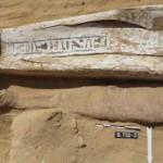 Первые пирамиды в Египте построила другая раса — ученые (фото)