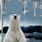 К 2050 году из-за глобального потепления пострадает миллиард человек – ООН