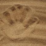 В Забайкалье пятилетний ребенок играл в палеонтолога и выкопал кости шерстистого носорога
