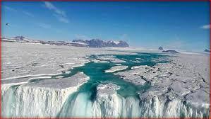 антарк