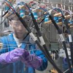 Революция — IBM разработали сверхмощный аккумулятор на простых материалах