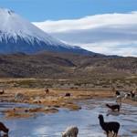 Ученые — таинственные огненные шары в Чили не были метеоритами