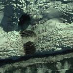 Исследователями обнаружен вход в подземные помещения загадочной базы в Антарктиде